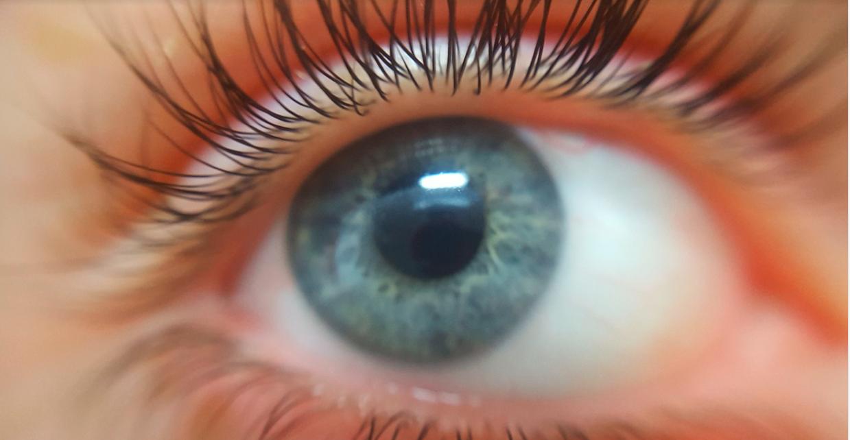 oko řasy